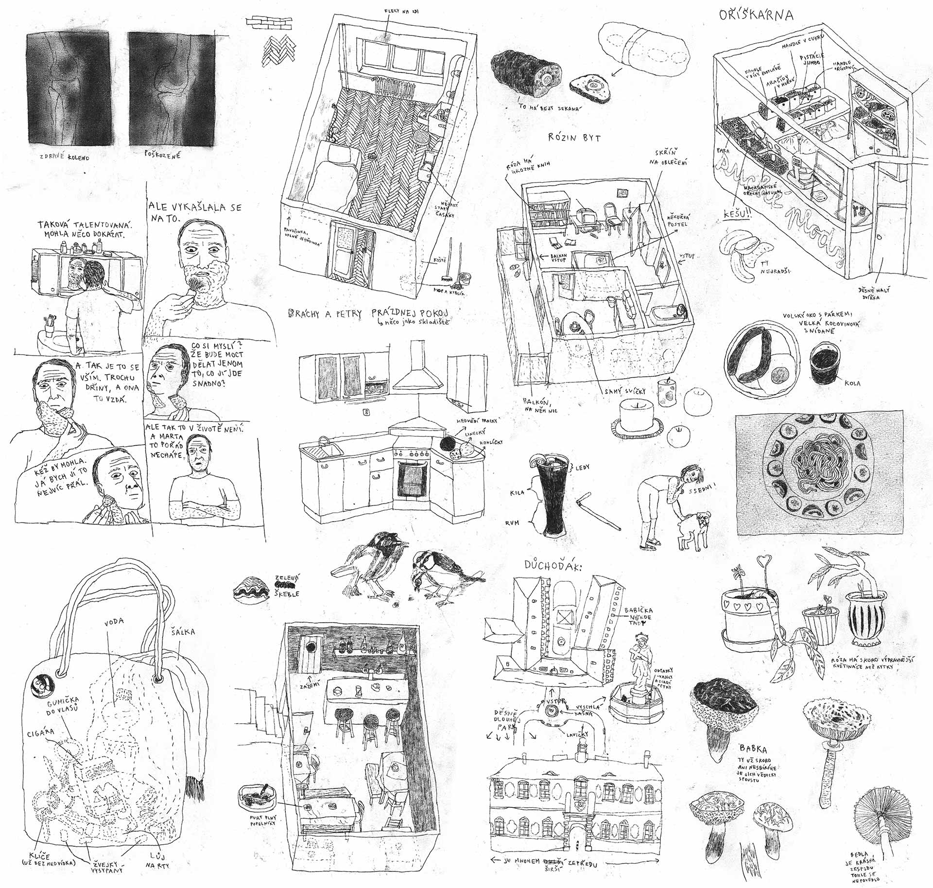 Marta_ilustrace-data-01-b